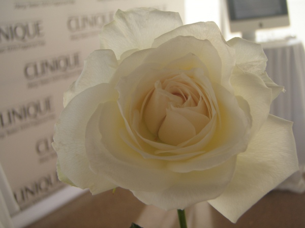 Clinique Perfect Match event: white rose